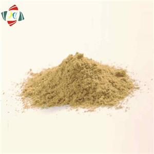 Sex Enhance Tongkat Ali Root Extract Powder 100:1, 200:1