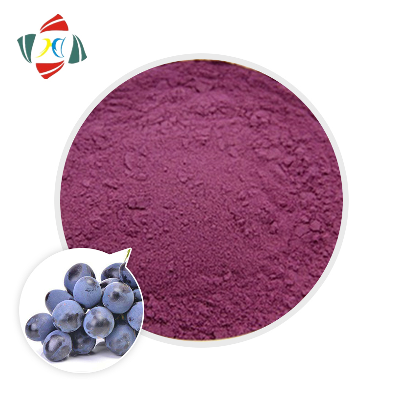 Wuhan HHD 100% Natural Blueberry Extract 10% 50% 95%, Proanthocyanidins CAS 4852-22-6