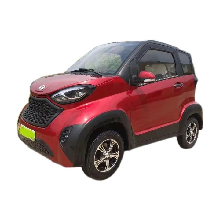 Family Mini Electric Car