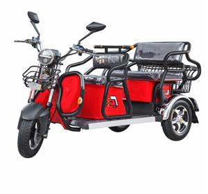 3 Wheel Electric Bicycle Adult Pedal Car