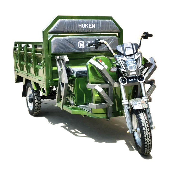 Powerful climbing hill Electric cargo Tricycle with 1000W Motor Model