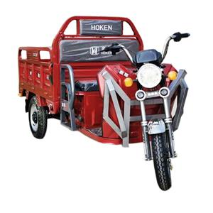 Solar Panel electric Tricycle 3-Wheel Cargo Loader