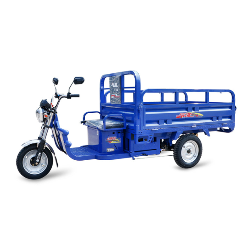 Customized Cargo electric tricycle for adults use Manufacturers, Customized Cargo electric tricycle for adults use Factory, Supply Customized Cargo electric tricycle for adults use
