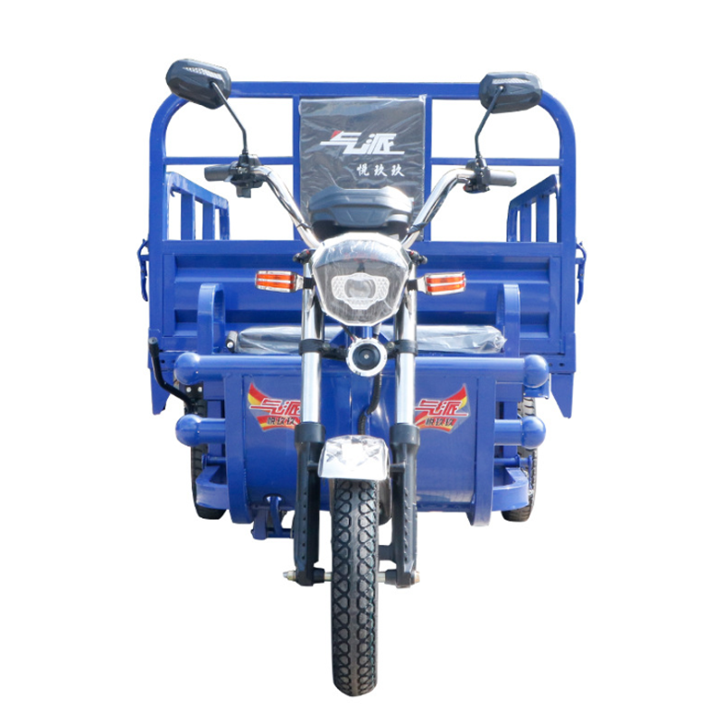 Customized Cargo electric tricycle for adults use