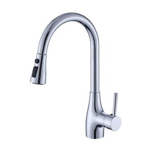 Single Handle Kitchen Sink Faucet With Pull Down Sprayer
