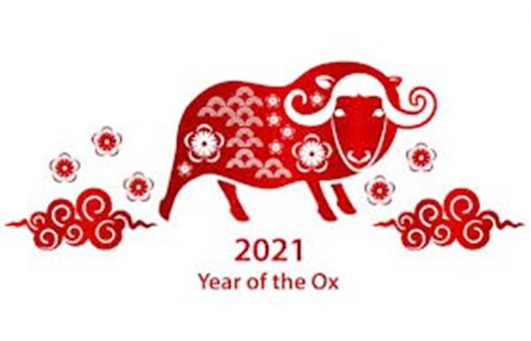 إشعار عطلة رأس السنة الصينية 2021 - قبضة الأسنان Tealth