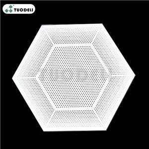 Aluminum Hexagonal Type Ceiling System
