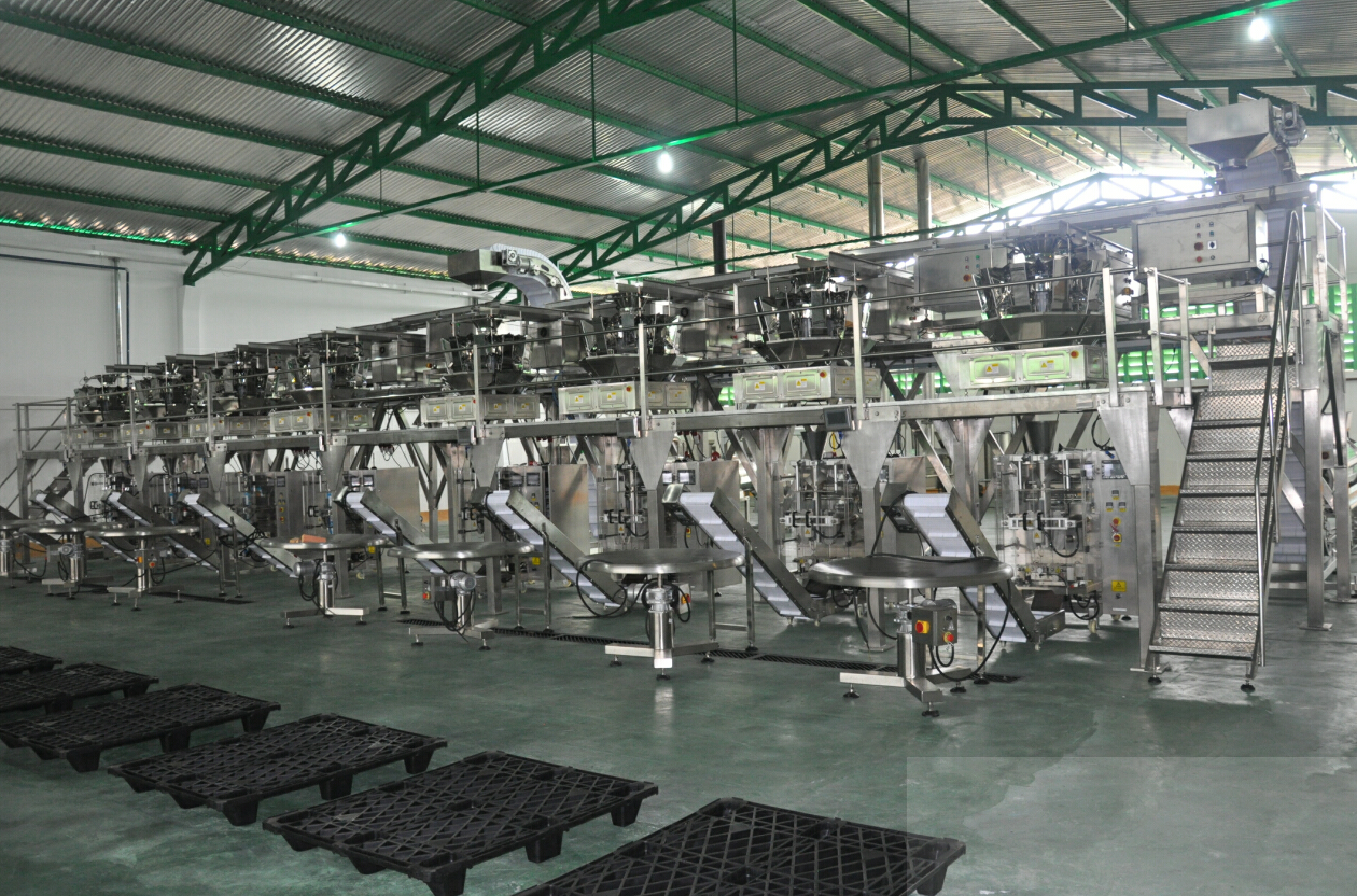 automatic feeding packing solution