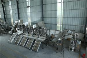 Baopack VD32 packing machine with different liters weigher to package spices