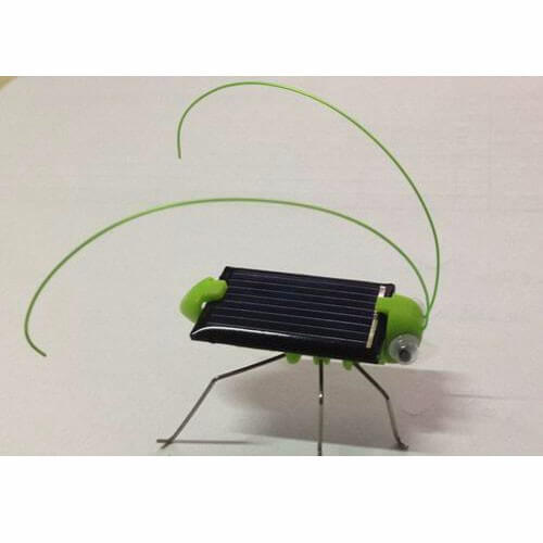 Gift Solar Insects