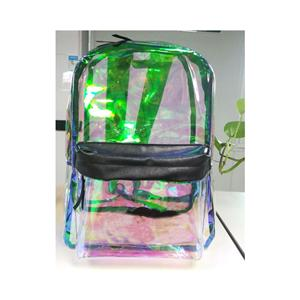 Museum Clear Backpack