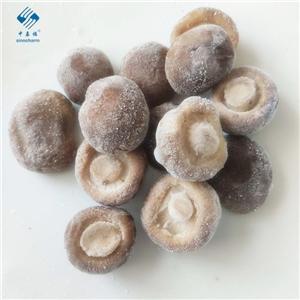 IQF 냉동 표고 버섯