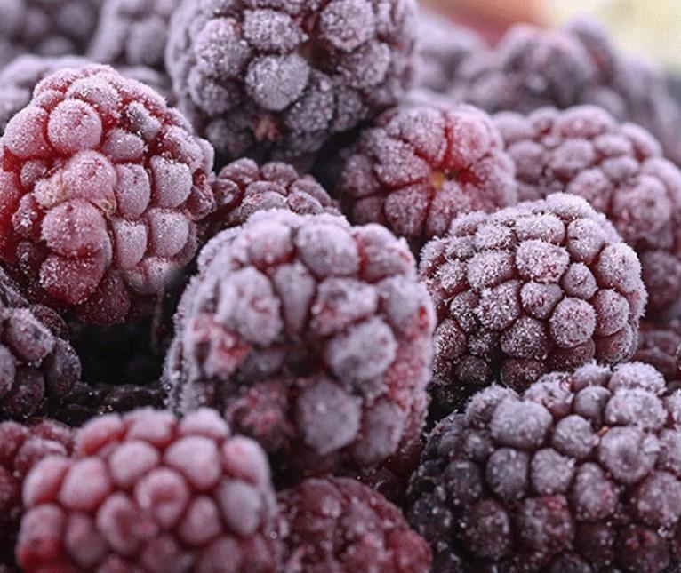 IQF Frozen Blackberry Manufacturers, IQF Frozen Blackberry Factory, Supply IQF Frozen Blackberry