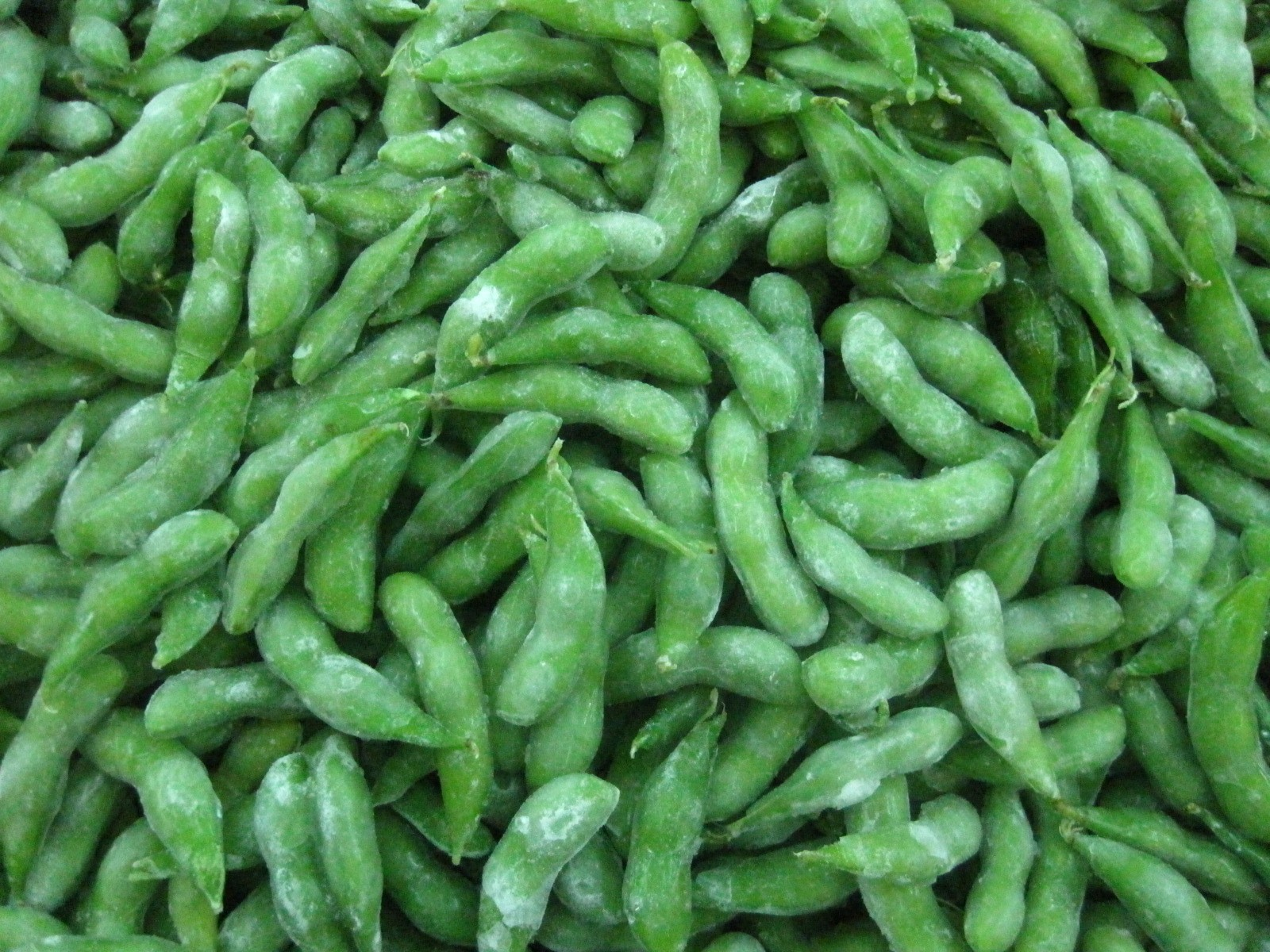 Frozen Cooked Soybean with Ice Glazing Manufacturers, Frozen Cooked Soybean with Ice Glazing Factory, Supply Frozen Cooked Soybean with Ice Glazing