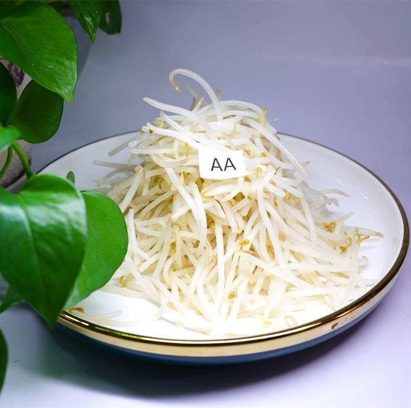 Frozen Mung Bean Sprout Manufacturers, Frozen Mung Bean Sprout Factory, Supply Frozen Mung Bean Sprout
