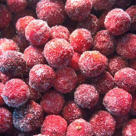 IQF Frozen waxberry Manufacturers, IQF Frozen waxberry Factory, Supply IQF Frozen waxberry