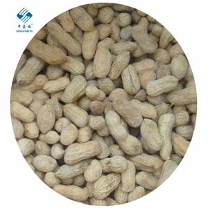 Frozen Peanut