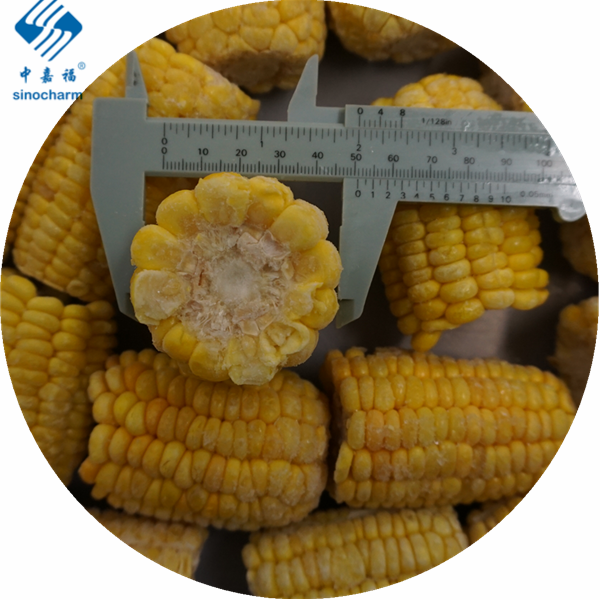 Frozen sweet Corn on cob Manufacturers, Frozen sweet Corn on cob Factory, Supply Frozen sweet Corn on cob