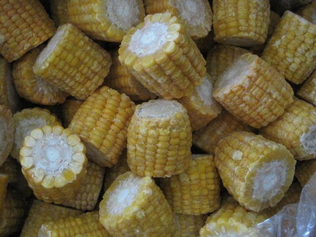 segmento de maíz vegetal congelado