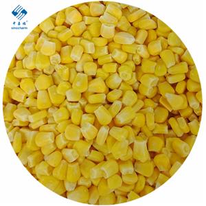 Grano de maíz congelado IQF