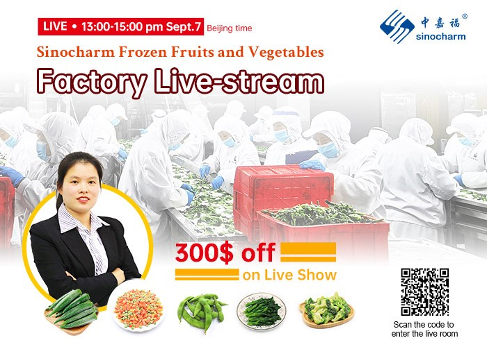 مرحبًا بكم في زيارة Live-Stream Factory Sinocharm Factory