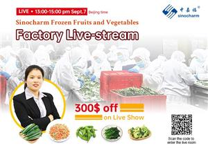 Welcome to Visit Sinocharm Factory Live-Stream