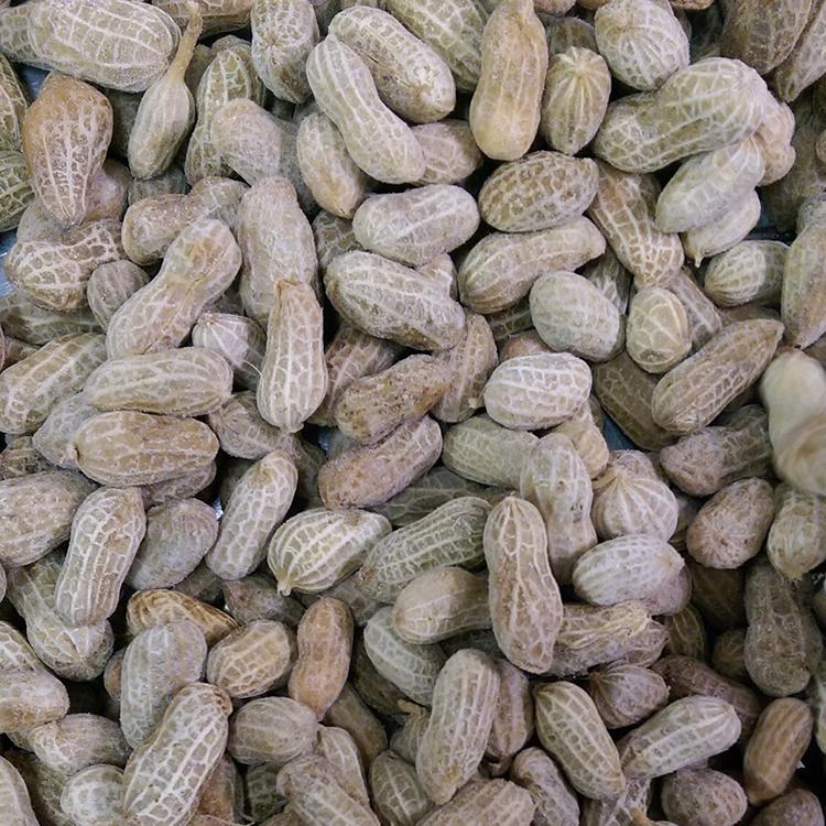 frozen boiled peanut