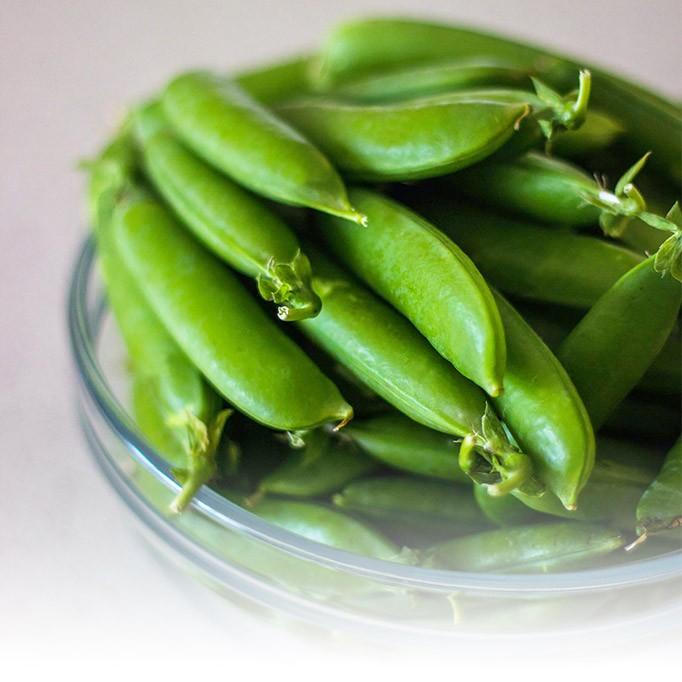 กระบวนการผลิตของ Snap Peas แช่แข็ง