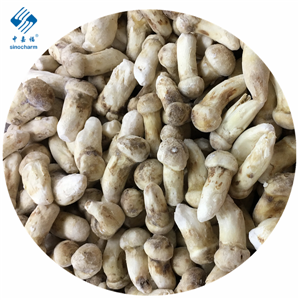 High Quality IQF Frozen Wild Natural Matsutake Whole Matsutake Slice