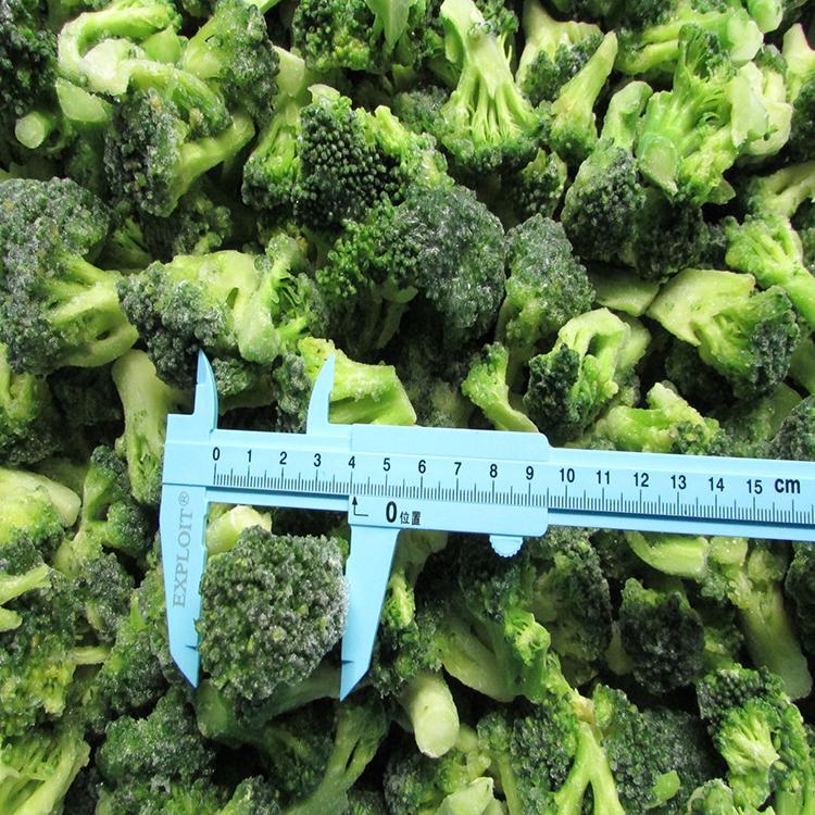 Frozen Broccoli Floret Manufacturers, Frozen Broccoli Floret Factory, Supply Frozen Broccoli Floret