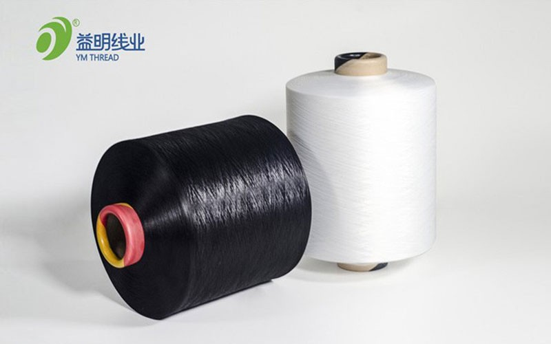 Dope Nhuộm Polyester DTY Sợi