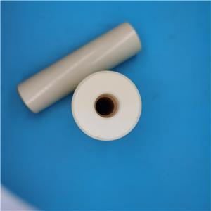 Ceramic Plunger For Cat Pumps Pressure Washer Pumps