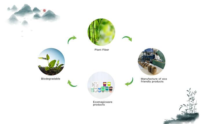 biodegradable plant fiber coffee mugs
