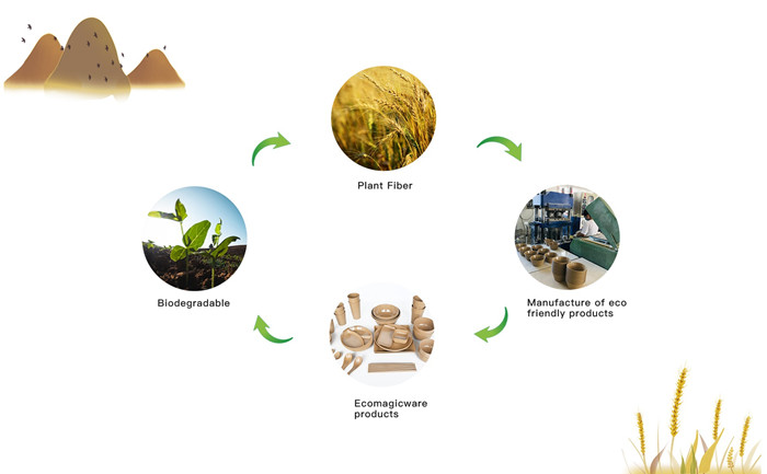 biodegradable rice husk tableware