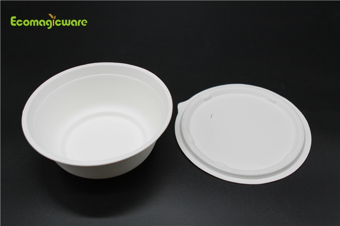 Eco Friendly Disposable Takeaway Bowls