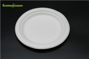 Eco Friendly Takeaway Plate
