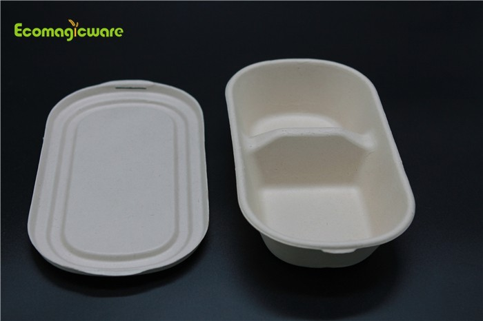 Eco Friendly Disposable Lunchbox