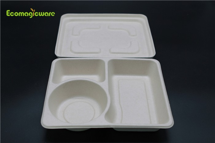 Eco Friendly Disposable Lunchbox Manufacturers, Eco Friendly Disposable Lunchbox Factory, Supply Eco Friendly Disposable Lunchbox