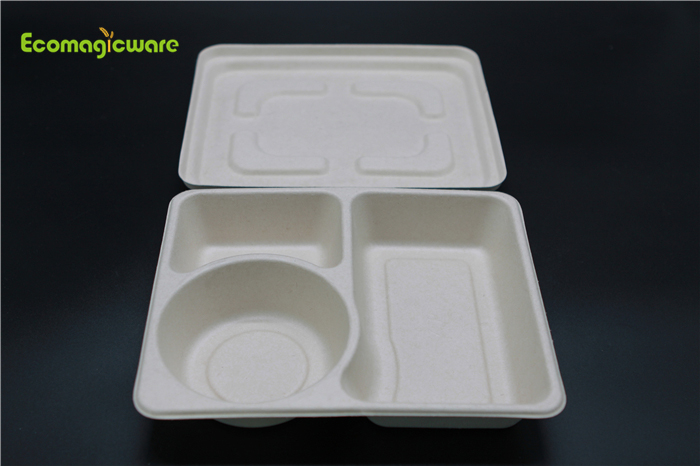 Eco Friendly Disposable Takeaway Lunchbox