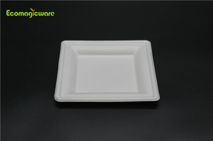 Eco Friendly Disposable Square Plate