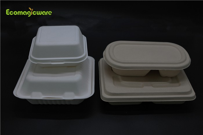 OEM Eco Friendly Disposable Food Package