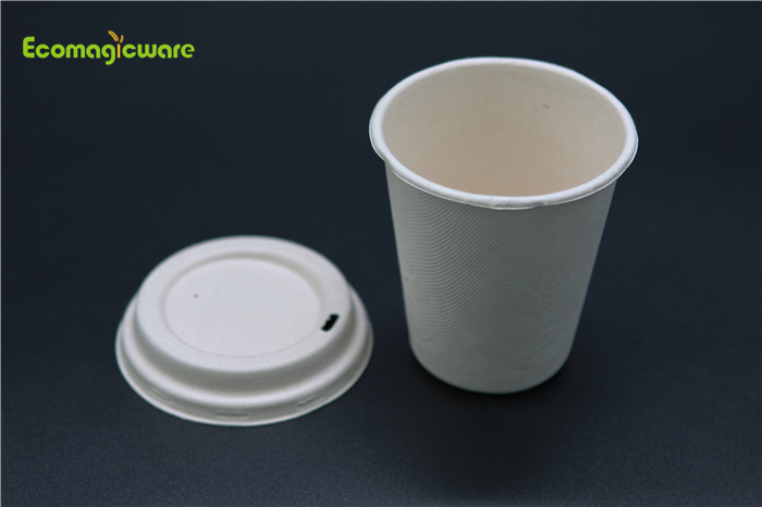 Eco Friendly Disposable Takeaway Mugs