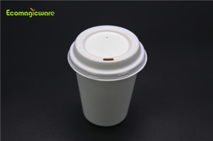 Eco Friendly Disposable Takeaway Water Container