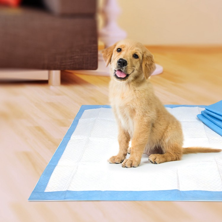 Super Absorbent Puppy Training Pad Leak Proof Dog Training Pad