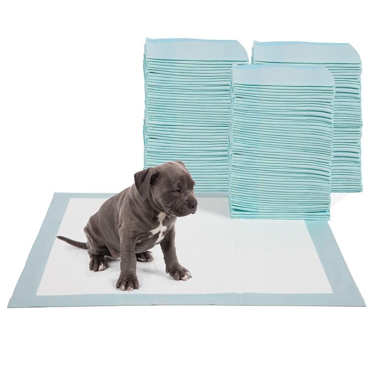 Super Absorbent Puppy Training Pad Leak Proof Dog Training Pad Manufacturers, Super Absorbent Puppy Training Pad Leak Proof Dog Training Pad Factory, Supply Super Absorbent Puppy Training Pad Leak Proof Dog Training Pad