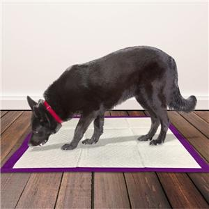 Home Protection Lavender Scent Odor Eliminating Dog Pads
