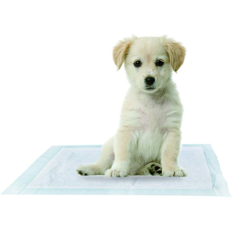 Beschafft Xxl Absorbent Pet Training Pads