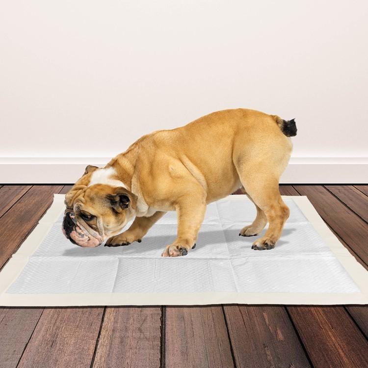 Pet Disposable Diaper Dog Cat Deodorant Absorption Pee Training