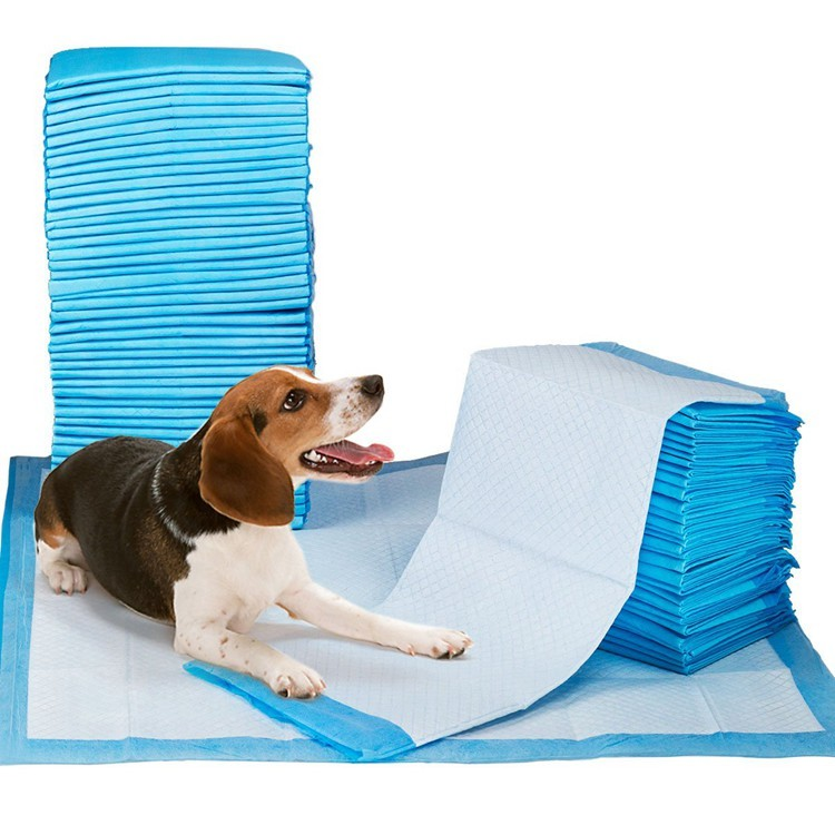 Pannolini per pannolini rimovibili monouso per cani super assorbenti