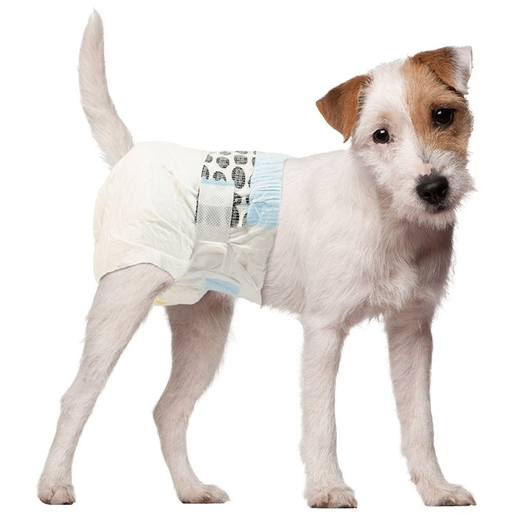 Female Dog Nappies & Puppy Diapers For Sale Manufacturers, Female Dog Nappies & Puppy Diapers For Sale Factory, Supply Female Dog Nappies & Puppy Diapers For Sale
